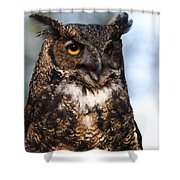 Great Horned Owl Portrait Shower Curtain