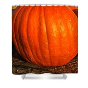 Great Orange Pumpkin Shower Curtain