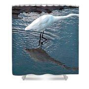 Great White Egret Shower Curtain