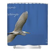 Great White Egret Holiday Card Shower Curtain