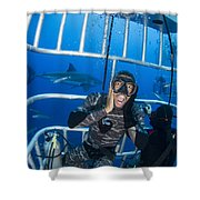Great White Shark Behind Frightened Shower Curtain