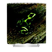 Green And Black Poison Dart Frog Shower Curtain