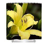 Green And Yellow - Lily Shower Curtain