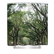 Green Arches  Shower Curtain
