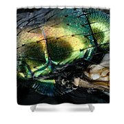 Green Blow Fly Shower Curtain
