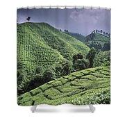 Green Fields On Hills Shower Curtain