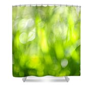 Green Grass In Sunshine Shower Curtain by Elena Elisseeva