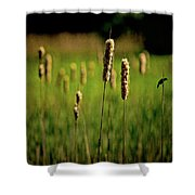 Green Grow The Rushes O Shower Curtain