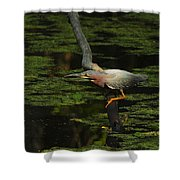 Green Heron Shower Curtain