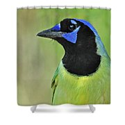 Green Jay Portrait Shower Curtain