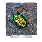 Green Junebug Shower Curtain