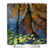 Green Leaves And Autumn Reflection Shower Curtain