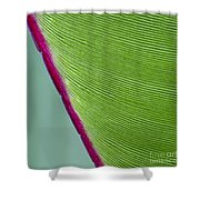 Green Leaves Series  7 Shower Curtain