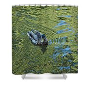Green Pool Shower Curtain