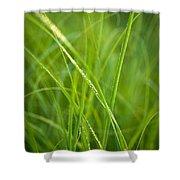 Green Prairie Grass Shower Curtain