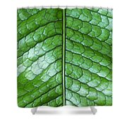 Green Scaly Leaf Pattern Shower Curtain