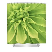 Green Sherbet Shower Curtain