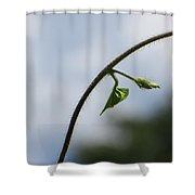 Green Span Shower Curtain