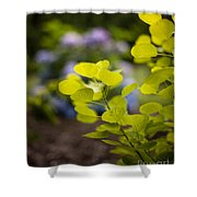 Leaves Illumination Shower Curtain