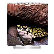 Green Toad Shower Curtain