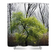 Green Tree And Pampas Grass Shower Curtain