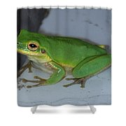 Green Tree Toad Shower Curtain