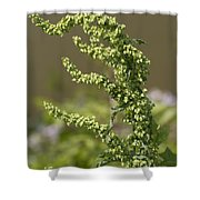 Green Weeds Can Be Beautiful Shower Curtain