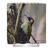Green Woodpecker Shower Curtain