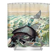 Greenland Whale Shower Curtain