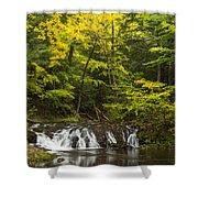 Greenstone Falls 4 Shower Curtain