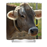 Grinning Cow Shower Curtain
