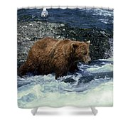 Grizzly Bear Fishing Shower Curtain