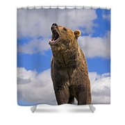 Grizzly Bear Roaring Shower Curtain
