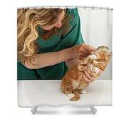 Grooming A Kitten Shower Curtain