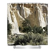 Grosvenor Shower Curtain