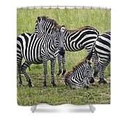 Group Of Barcodes Shower Curtain