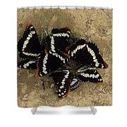 Group Of Butterflies Shower Curtain