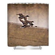 Grouping V1 Shower Curtain