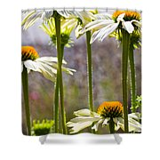 Groupings Shower Curtain