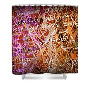Grunge Background 3 Shower Curtain