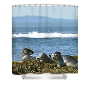 Guardians Of Agementicus Shower Curtain