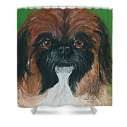 Gucci The Peke Shower Curtain