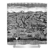 Gulf Coast, C1720 Shower Curtain