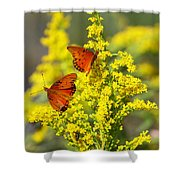 Gulf Fritilaries On Golden Rod Shower Curtain