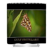 Gulf Fritillary 2 Shower Curtain