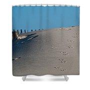 Gull Prints Shower Curtain