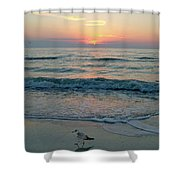 Gulls At Sunset On The Gulf Shower Curtain