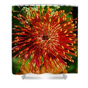 Gum Flower Shower Curtain