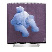 Gunshot Residue Shower Curtain