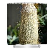 Hairy Cactus Shower Curtain